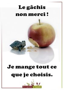 Affiches anti gaspillage alimentaire
